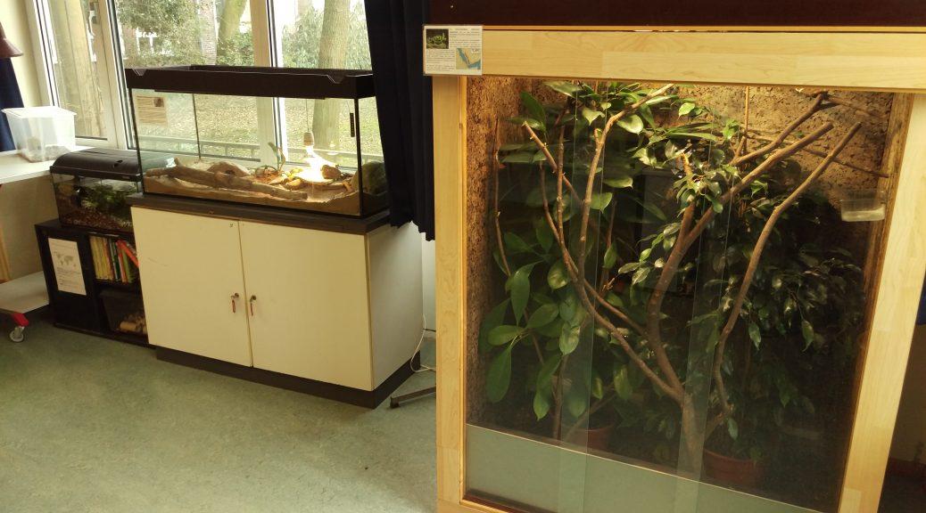 Blick in das Vivarium des Gymnasiums am Waldhof in Bielefald
